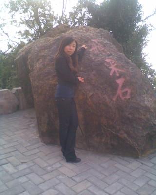 石头上画画动物