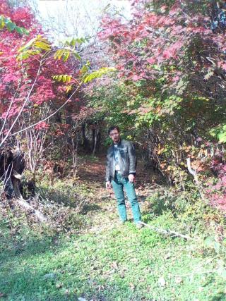 无名的秋天资料照片_吉林白山征婚交友_珍爱网