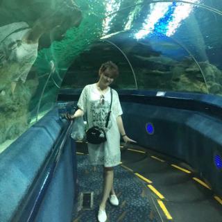 壁纸 海底 海底世界 海洋馆 水族馆 320_320